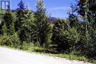 Photo 6: 8488 BLACK MOUNTAIN RD in Chase: Vacant Land for sale : MLS®# 163450