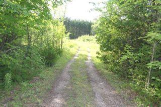 Photo 13: Lt 27 Ramblewood Trail in Kawartha Lakes: Rural Bexley Property for sale : MLS®# X4857401