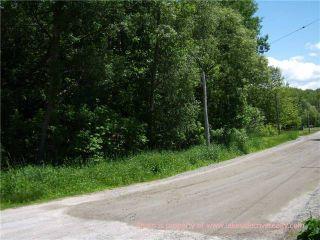 Photo 4: 4128 Fountain Drive in Ramara: Rural Ramara Property for sale : MLS®# X3531612