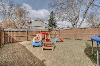 Photo 32: 704 43 Street SE in Calgary: Forest Heights Semi Detached for sale : MLS®# A1096355