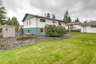 Photo 19: 3325 CARDINAL Drive in Burnaby: Government Road House for sale (Burnaby North)  : MLS®# R2157428