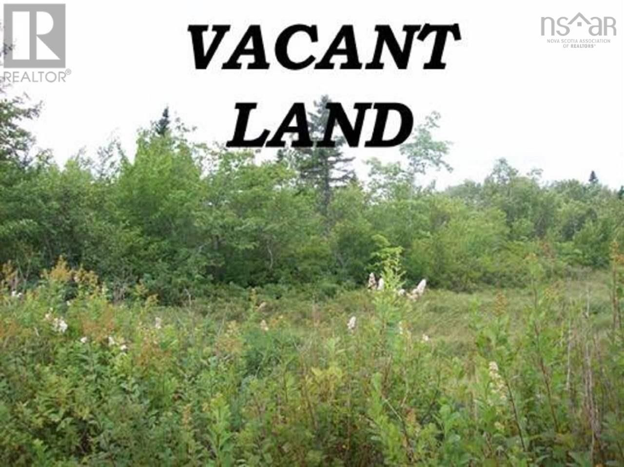Main Photo: Lot Telfer Road in Caledonia: 406-Queens County Vacant Land for sale (South Shore)  : MLS®# 202125824