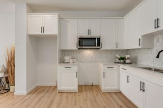Photo 18: 249 Lucas Avenue NW in Calgary: Livingston Row/Townhouse for sale : MLS®# A1102463