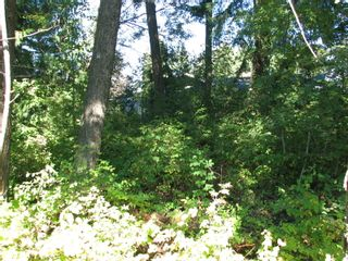 Photo 9: lot 46: Blind Bay Land Only for sale (shuswap)  : MLS®# 10214876