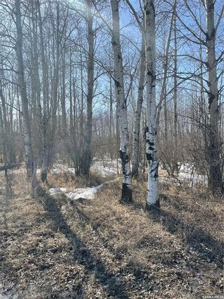 Photo 1: 65 acres land in Preeceville: Lot/Land for sale : MLS®# SK848653