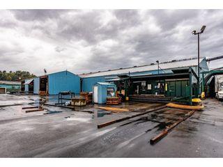 Photo 6: 720 RIVERSIDE Road in Abbotsford: Poplar Industrial for sale : MLS®# C8027941