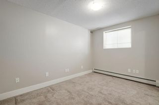 Photo 17: 44 Chinook Drive in Calgary: Chinook Park Detached for sale : MLS®# A1052138