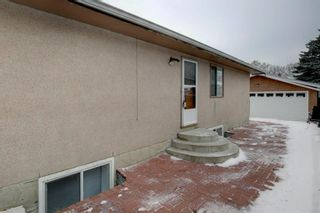 Photo 29: 3050 30A Street SE in Calgary: Dover Detached for sale : MLS®# A1050632
