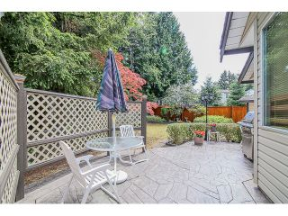"Photo 20: 15444 90A Avenue in Surrey: Fleetwood Tynehead House for sale in ""BERKSHIRE PARK area"" : MLS®# F1443222"