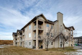 Photo 24: 107 3000 Citadel Meadow Point NW in Calgary: Citadel Apartment for sale : MLS®# A1070603