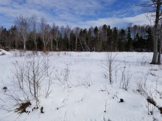 Photo 2: Lot 11 Stewood Drive in Howie Centre: 207-C. B. County Vacant Land for sale (Cape Breton)  : MLS®# 202106669