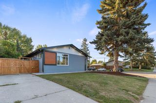 Photo 3: 9703 2 Street SE in Calgary: Acadia Detached for sale : MLS®# A1144786