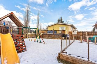 Photo 23: 420 SPRING HAVEN Court SE: Airdrie Detached for sale : MLS®# C4289302