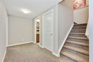 Photo 40: 59 Marquis Cove SE in Calgary: Mahogany Detached for sale : MLS®# A1087971