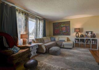 Photo 5: 11711 40 Avenue in Edmonton: Zone 16 House for sale : MLS®# E4247223