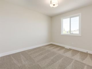 Photo 37: 159 CANOE Crescent SW: Airdrie Detached for sale : MLS®# A1019943
