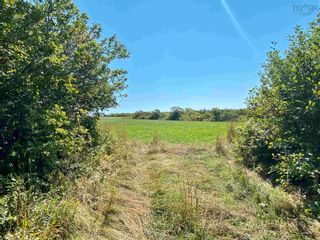 Photo 16: 11.6 acres East Tracadie Road in East Tracadie: 301-Antigonish Vacant Land for sale (Highland Region)  : MLS®# 202122282