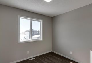 Photo 19: 286 Cornerstone Crescent NE in Calgary: Cornerstone Detached for sale : MLS®# A1075287