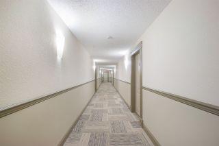 Photo 20: 117 12660 142 Avenue NW in Edmonton: Zone 27 Condo for sale : MLS®# E4239294