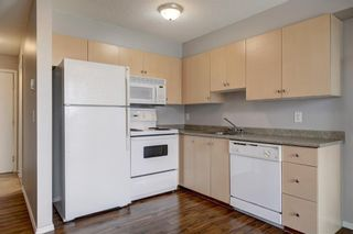 Photo 6: 144 1717 60 Street SE in Calgary: Red Carpet Apartment for sale : MLS®# A1131300