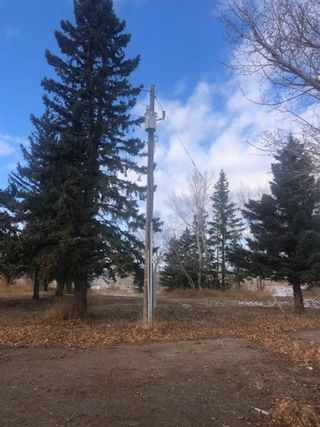 Photo 8: 16022 402 Avenue E: Rural Foothills County Land for sale : MLS®# A1051546