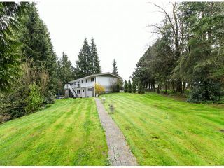 Photo 18: 30281 MERRYFIELD Avenue in Abbotsford: Bradner House for sale : MLS®# F1408278