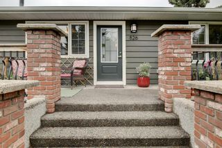 Photo 25: 826 17 Avenue SE in Calgary: Ramsay Detached for sale : MLS®# A1104320