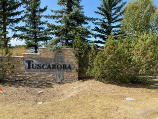 Photo 46: 71 TUSCARORA Crescent NW in Calgary: Tuscany Detached for sale : MLS®# A1030539