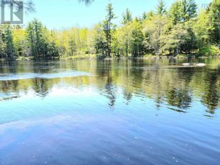 Photo 12: Medway River Road in Bangs Falls: Vacant Land for sale : MLS®# 202122898