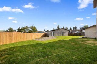 Photo 5: 28 Falton Mews NE in Calgary: Falconridge Detached for sale : MLS®# A1144383