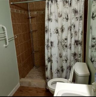 Photo 37: 105 Langton Drive SW in Calgary: North Glenmore Park Detached for sale : MLS®# A1066568