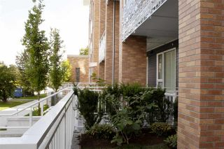 Photo 7: 101 6933 CAMBIE Street in Vancouver: South Cambie Condo for sale (Vancouver West)  : MLS®# R2377038
