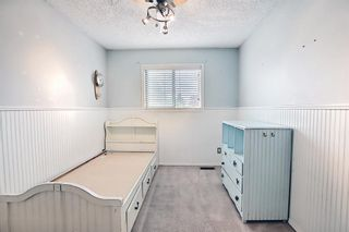 Photo 26: 52 Everglade Drive SE: Airdrie Semi Detached for sale : MLS®# A1139182