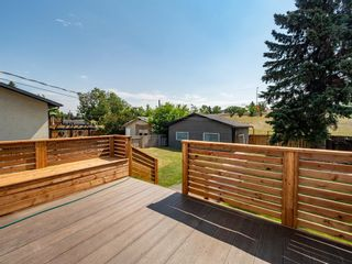 Photo 24: 1375 Lake Michigan Crescent SE in Calgary: Bonavista Downs Detached for sale : MLS®# A1125097