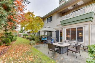 """Photo 29: 248 13888 70 Avenue in Surrey: East Newton Townhouse for sale in """"Chelsea Gardens"""" : MLS®# R2516889"""