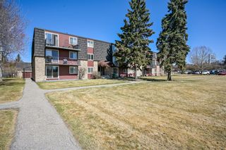 Main Photo: 11B 80 Galbraith Drive SW in Calgary: Glamorgan Apartment for sale : MLS®# A1096759