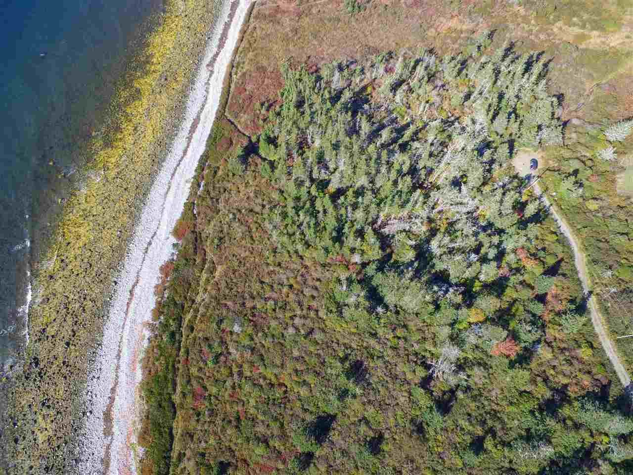 Main Photo: Lots 19-20 Youngs Road in East Green Harbour: 407-Shelburne County Vacant Land for sale (South Shore)  : MLS®# 202022915