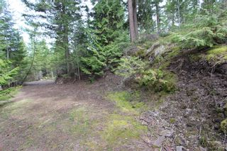 Photo 12: 2388 Waverly Drive: Blind Bay Vacant Land for sale (South Shuswap)  : MLS®# 10201100