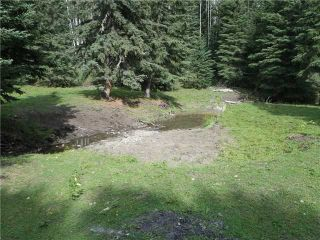 Photo 15: 2 miles west of Dartique Hall in COCHRANE: Rural Rocky View MD Rural Land for sale : MLS®# C3545361