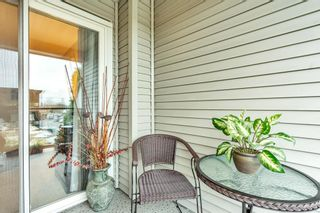 "Photo 21: 321 20200 56 Avenue in Langley: Langley City Condo for sale in ""THE BENTLEY"" : MLS®# R2526223"