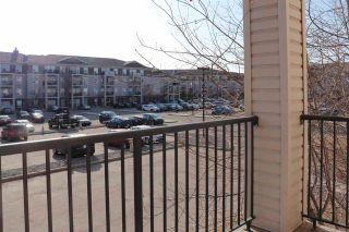 Photo 19: 7205 7327 SOUTH TERWILLEGAR Drive in Edmonton: Zone 14 Condo for sale : MLS®# E4237327