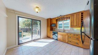 Photo 13: 309 GREENOCH Crescent in Edmonton: Zone 29 House for sale : MLS®# E4261883