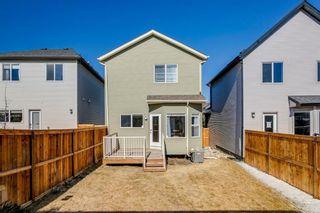 Photo 26: 169 CRANFORD Drive SE in Calgary: Cranston Detached for sale : MLS®# A1086236