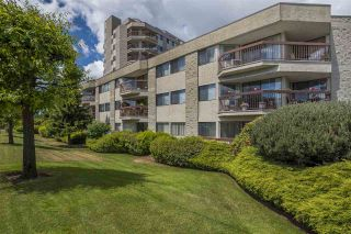 Photo 1: 211 31955 OLD YALE ROAD in Abbotsford: Abbotsford West Condo for sale : MLS®# R2274586