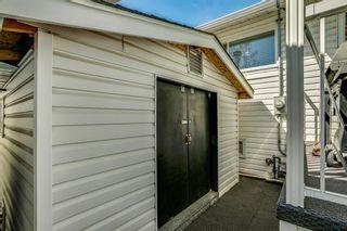 Photo 47: 10808 Maplecreek Drive SE in Calgary: Maple Ridge Detached for sale : MLS®# A1102150