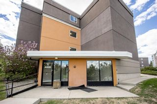 Photo 21: 202 4455C Greenview Drive NE in Calgary: Greenview Apartment for sale : MLS®# A1110677
