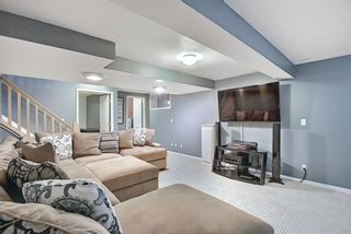 Photo 33: 328 Templeton Circle NE in Calgary: Temple Detached for sale : MLS®# A1074791