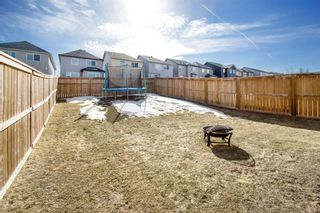 Photo 29: 459 Nolan Hill Drive NW in Calgary: Nolan Hill Detached for sale : MLS®# A1085176
