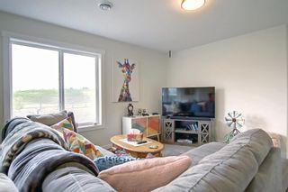 Photo 31: 150 Speargrass Crescent: Carseland Detached for sale : MLS®# A1146791
