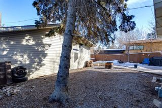 Photo 28: 56 Kentish Drive SW in Calgary: Kingsland Detached for sale : MLS®# A1078785